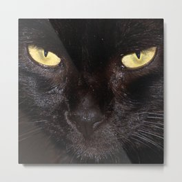 The black cat Metal Print