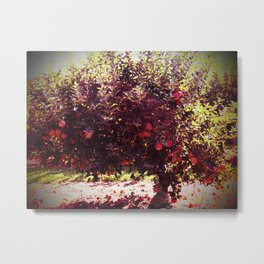 Bushel of Apples Metal Print