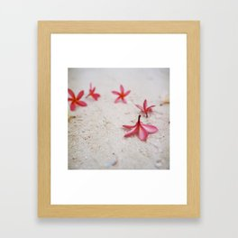 These are the days ..  Framed Art Print