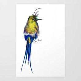 Yellow Hummingbird Art Print