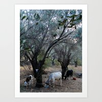 cows Art Prints featuring Cows by aeolia