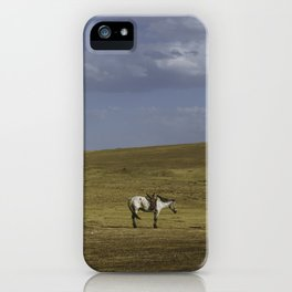 A Nomads Horse iPhone Case