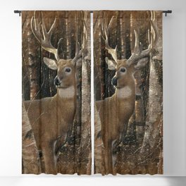 Deer - Birchwood Buck Blackout Curtain