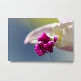 Orchid tongue Metal Print