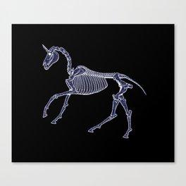 Unicorn Fossil Canvas Print