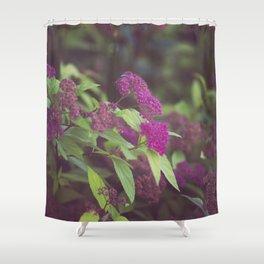 purple flower. Shower Curtain