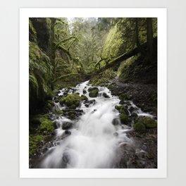 Whitewater Flow Art Print