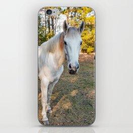 """Apache"" The Worrier iPhone Skin"
