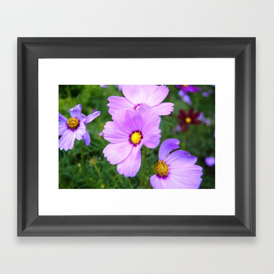 Purple Blaze Framed Art Print