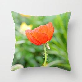 Lovely Orange Throw Pillow