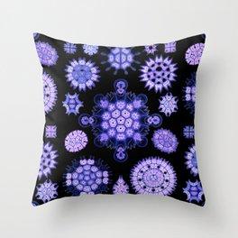 Ernst Haeckel - Melethallia (Purple) Throw Pillow