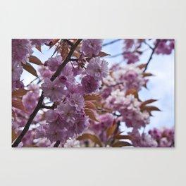 Spring is Near II Canvas Print