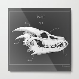 Dragon Skull Metal Print