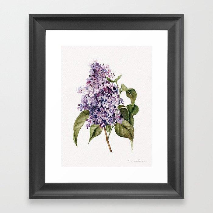 Lilac Branch Gerahmter Kunstdruck