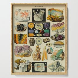 Minerals Vintage Scientific Illustration French Language Encyclopedia Lithographs Educational Diagra Serving Tray