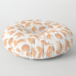 Cat Poses Floor Pillow