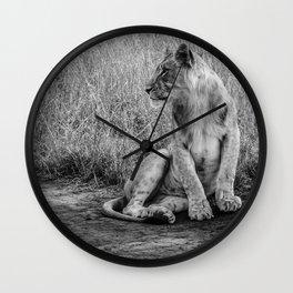 Pensive Lion Wall Clock