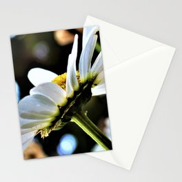Flower No 4 Stationery Cards