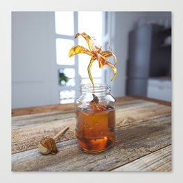 Honey Flower Canvas Print