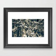 Covered Branches Framed Art Print