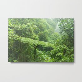 Misty rainforest in Monteverde cloud forest reserve Metal Print