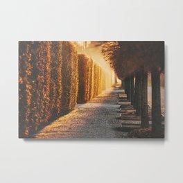 Follow The Light Metal Print