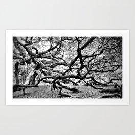 Grasp of the Ancient Oak Art Print
