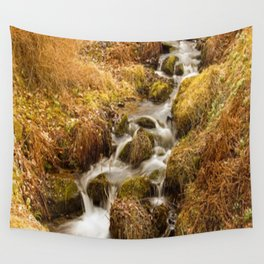 Places - Autumn in Dawyck Botanic Garden Scotland Wall Tapestry