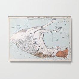 Antique Constellation Map of Pegasus, Equuleus Metal Print