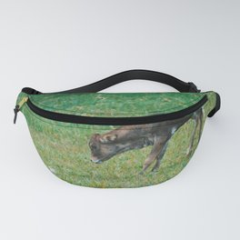 Baby Cow Fanny Pack