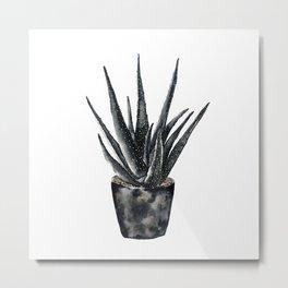 Dark Aloe Vera Plant black and gold succulent Metal Print