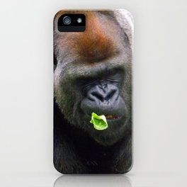 Male Silverback Lowland Gorilla with Smirk and Lettuce in Mouth iPhone Case