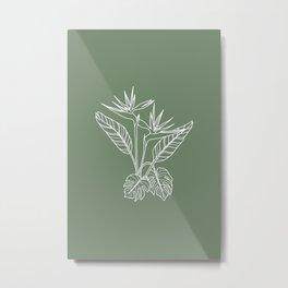 Sage Bird of Paradise Metal Print