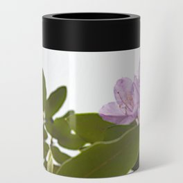 Pink Azalea Flowers with Spring Green Leaves Can Cooler