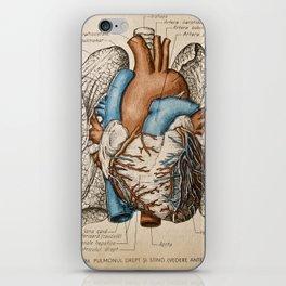 Vintage anatomy illustration iPhone Skin