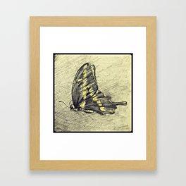 Butterfly Sketch Framed Art Print