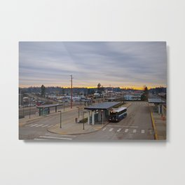 Lakewood landscape Metal Print