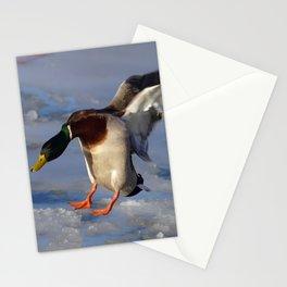 Incoming Mallard Duck Stationery Cards