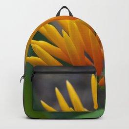 Flowering Ginger Backpack