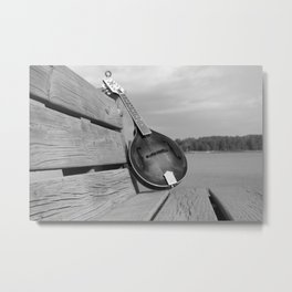 Mandolin Metal Print