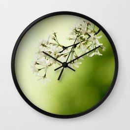 Spring - Study 8 Wall Clock