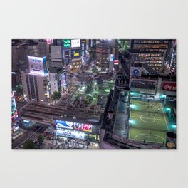 A School for Ants Canvas Print