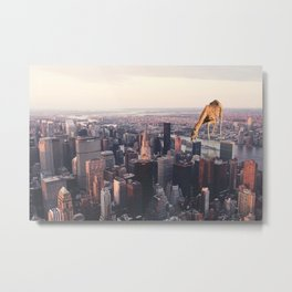 Urban Animals Giraffe Metal Print