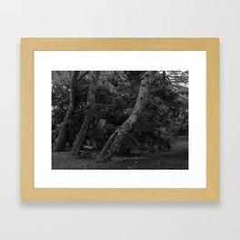 Capricho IV Framed Art Print
