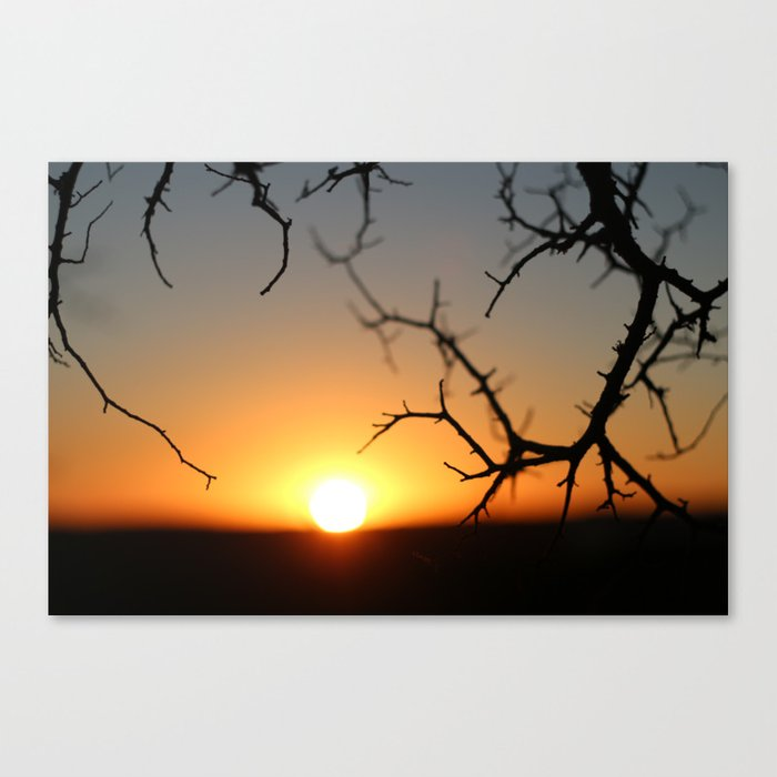 ball of fire Canvas Print