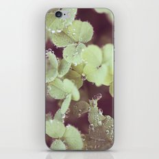 Crystal Beads iPhone & iPod Skin