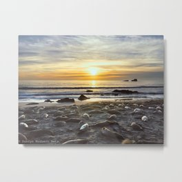Sunset with the Seals Metal Print