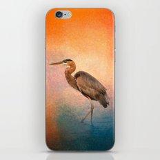 Sunset Heron iPhone & iPod Skin