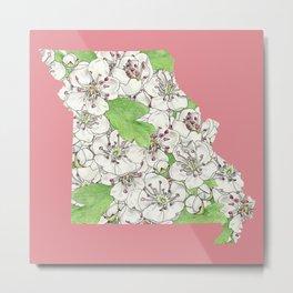 Missouri in Flowers Metal Print