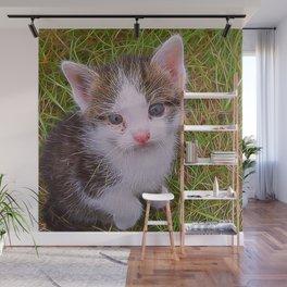 Extraordinary animals-Kitten Wall Mural